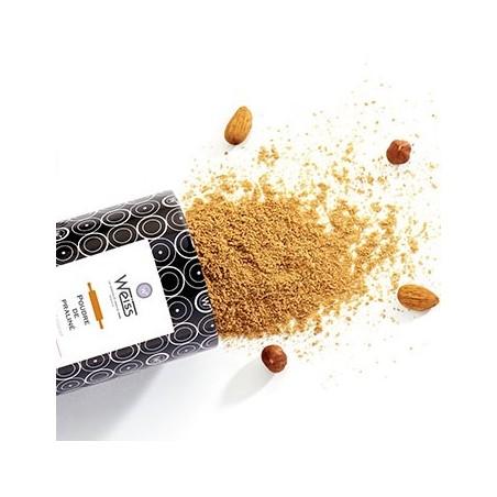 Poudre de praliné - Praliné amande noisette - Amandes - Noisettes - Boîte métal renversée
