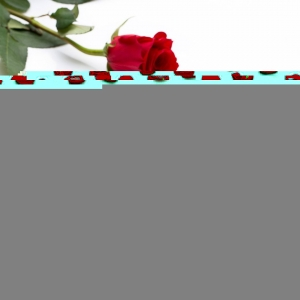 """La Saint-Valentin a inspiré notre communauté, on vous partage quelques-unes de ces magnifiques réalisations 😍 Tout d'abord bravo au Chef @gregorydoyen pour ses sublimes coeurs d'amour, un savoureux dessert chocolat, cerise et crème à la vanille. ❤️ On poursuit avec le magnifique bouquet de roses en chocolat de @pascaline_thekitchen, une superbe création pleine de douceur ! Juste après on tombe sous le charme des coeurs rouges de @lespapillesdelouise avec ce rouge tellement romantique et un insert framboise très gourmand. 🥰 On termine avec pour les superbes coeurs 100% vegan réalisés par le chef @richardhawkepastry à base de framboises et citron yuzu ! Une Saint Valentin sous le signe du chocolat, quoi d'autre ?  Valentine's Day inspired our community, let's share with you some of those beautiful creations. 😍 First, congratulations to Chef @gregorydoyen  for those beautiful """"coeurs d'amour"""" a tasty dessert with chocolate, cherry and vanilla cream. ❤️ Let's continue with the amazing chocolate roses bouquet by @pascaline_thekitchen , a sweet and beautiful creation ! Next we fall in love with the red hearts by @lespapillesdelouise  with this so romantic red and a delicious raspberry insert. 🥰 We finish with the magnificent and vengan 100% hearts by the Chef @richardhawkepastry  made with raspberry and yuzu lemon ! A Valentine's Day on the them of chocolate, what else ?  #chocolate #weisschocolate #tasty #gift #chocolatelovers #madeinfrance #chocolateaddict #recipe #recette #repost #valentinesday #saintvalentin"""